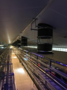 ARC Chimney Ventilation - Poultry House Germany - TPI-Polytechniek