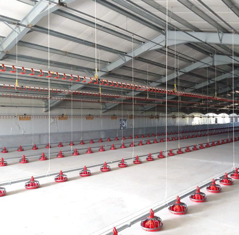 Poultry House with TPI Air Inlets