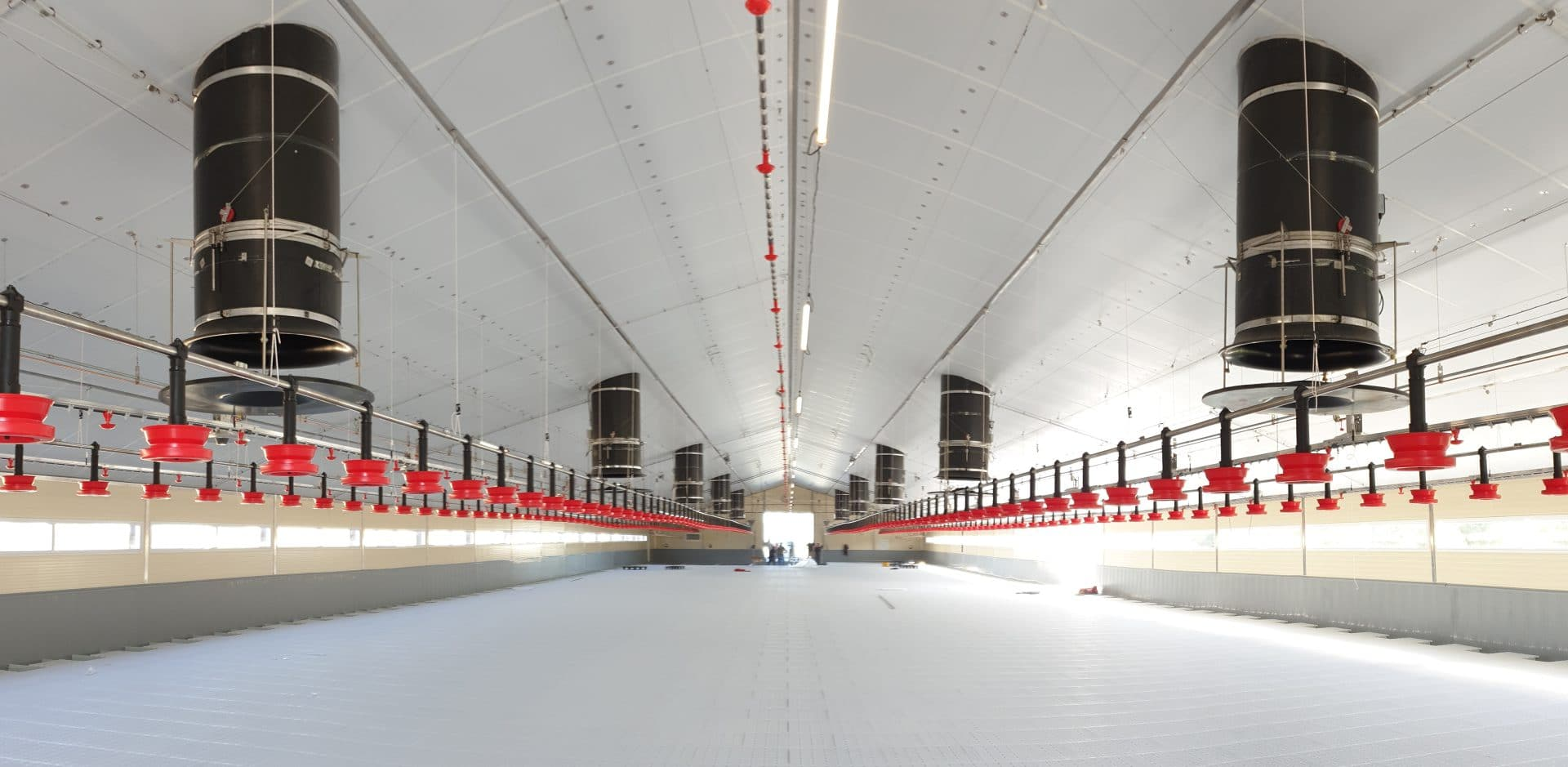 Wide poultry house with equal pressure ventilation chimneys
